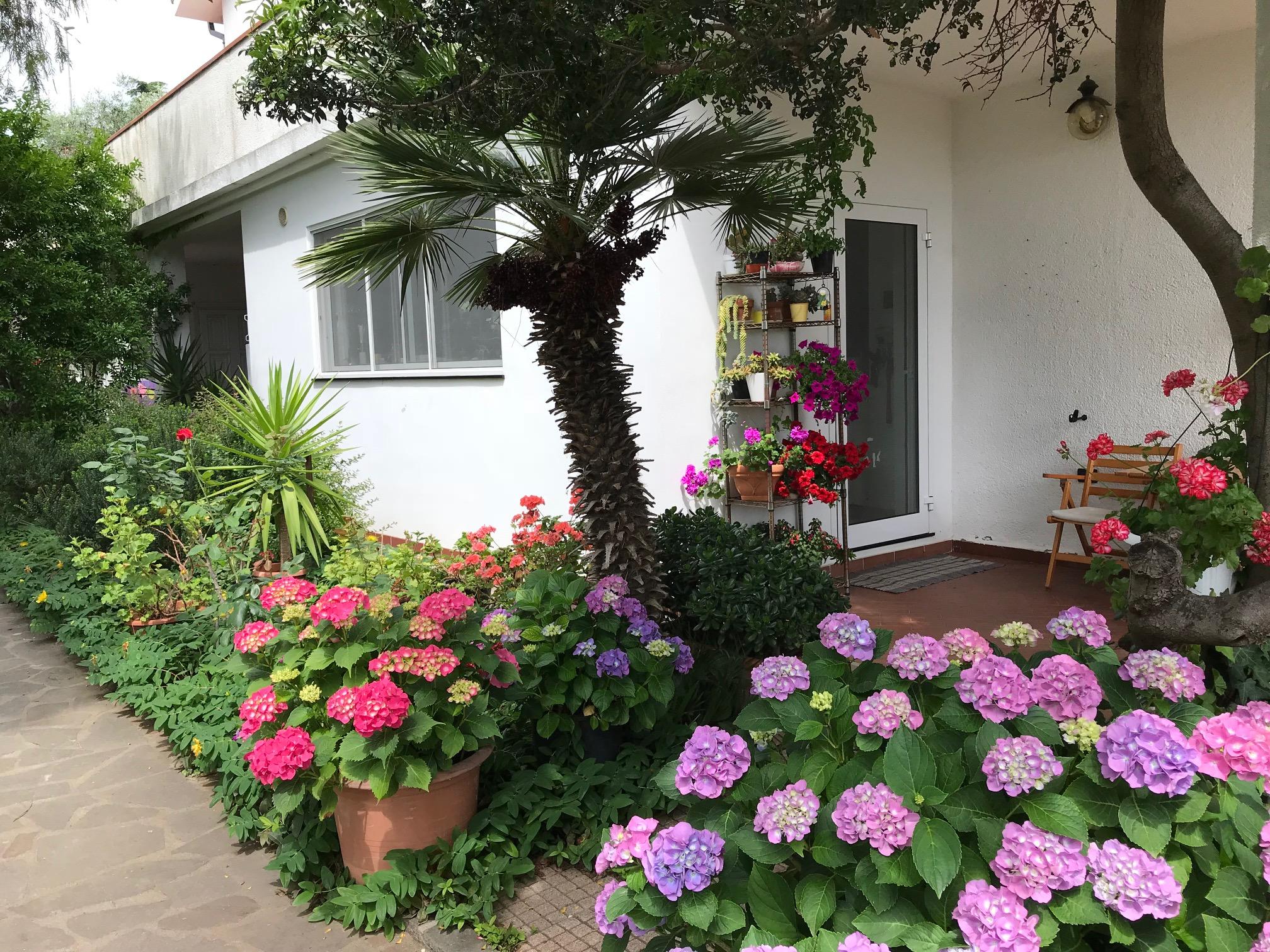 Porto Maurizio spacious villa with garden