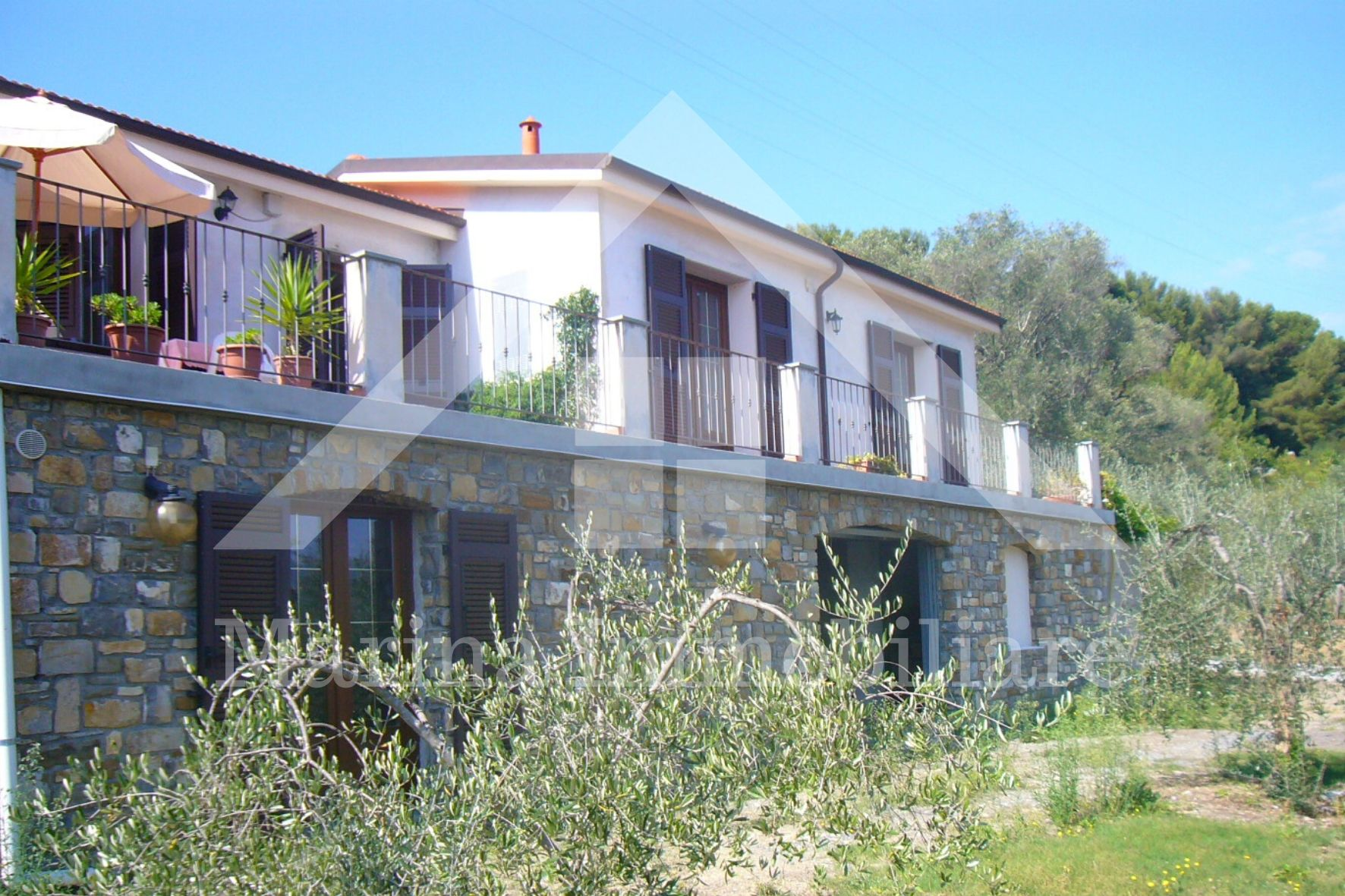 Olive groves house 15min from Imperia beach