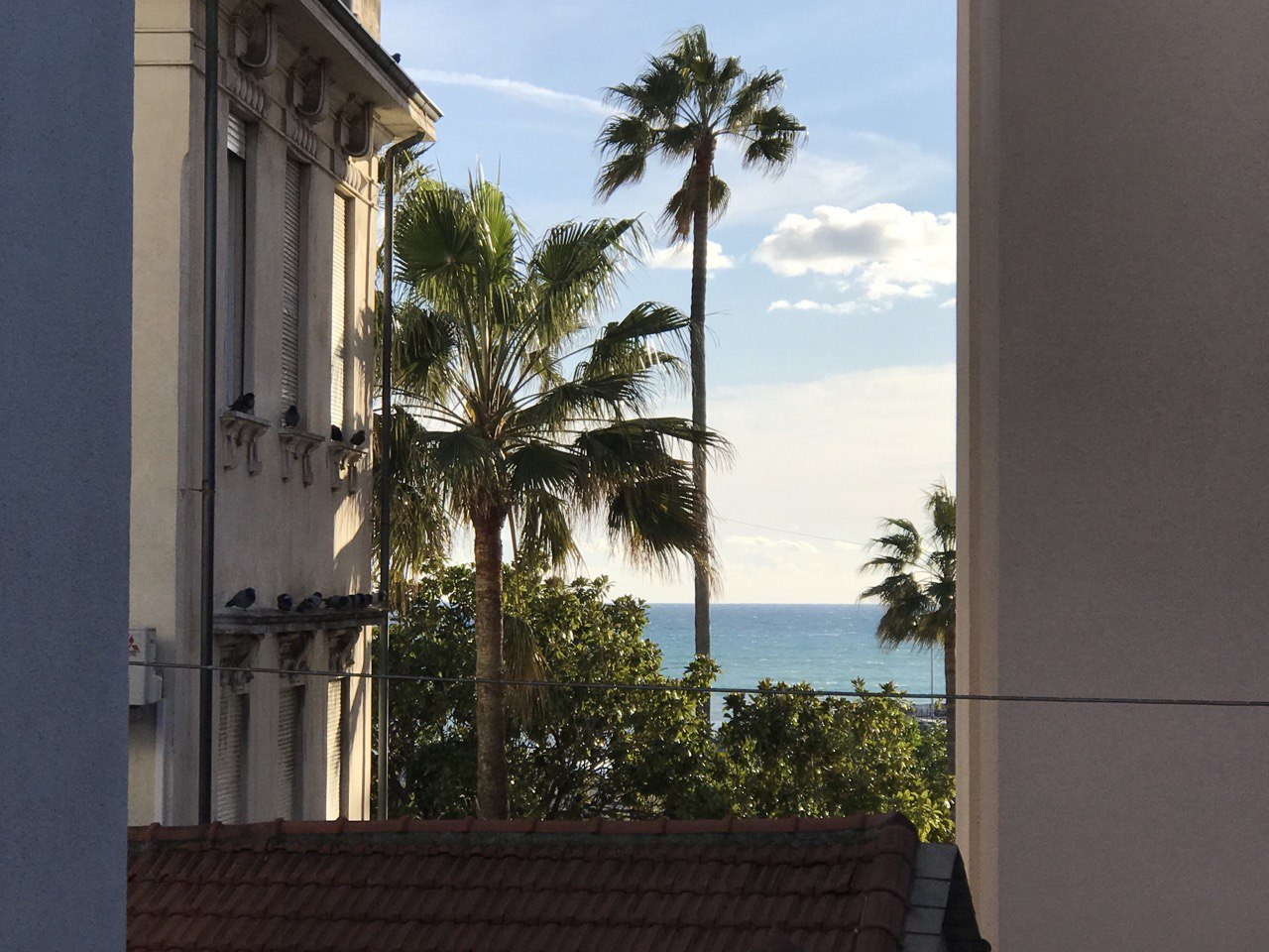 4 room apartment in Center Oneglia with terrace view
